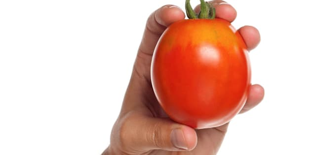 man hand with red tomato...