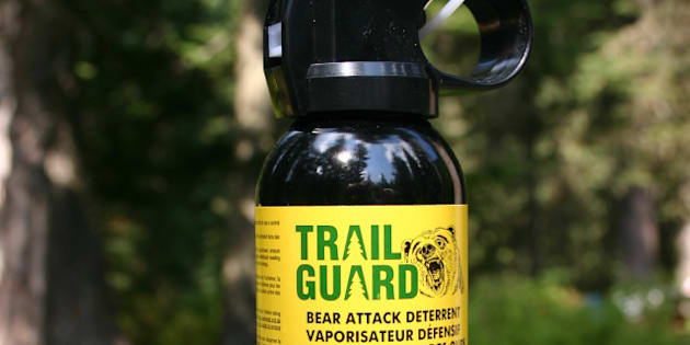 Photograph of bear attack deterrent spray.  Bought in British Columbia, Canada.  Height: approximately 20 cm.  accedentially firing the spray.  ...