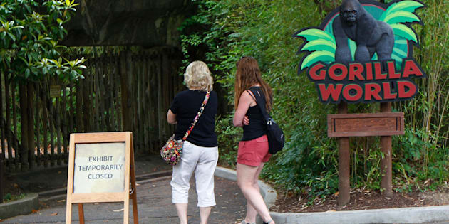 CINCINNATI, OH - JUNE 2: Visitors walk past the closed main entrance to the Cincinnati Zoo's Gorilla World exhibit days after a 3-year-old boy fell into the moat and officials were forced to kill Harambe, a 17-year-old Western lowland silverback gorilla June 2, 2016 in Cincinnati, Ohio. The exhibit is still closed as zoo officials work to upgrade safety features of the exhibit.  (Photo by John Sommers II/Getty Images)