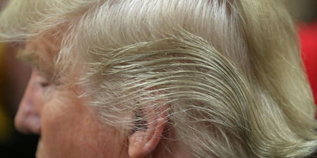 COUNCIL BLUFFS, IA - JANUARY 31:  Detail of Republican presidential candidate Donald Trump's hair as he signs autographs after a campaign rally at the Gerald W. Kirn Middle School on January 31, 2016 in Council Bluffs, United States. Trump and other presidential hopefuls are in Iowa trying to gain support and crucial votes for tomorrow's caucuses.  (Photo by Christopher Furlong/Getty Images)