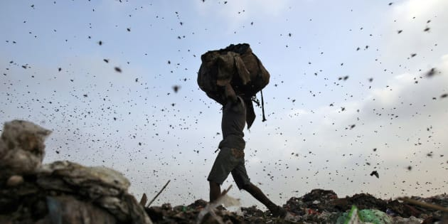 Insects and birds fly in a dump yard as a rag picker collects scraps in New Delhi.