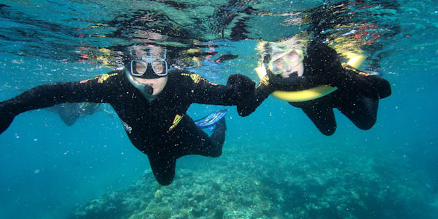 Labor has announced its policy around the Great Barrier Reef.
