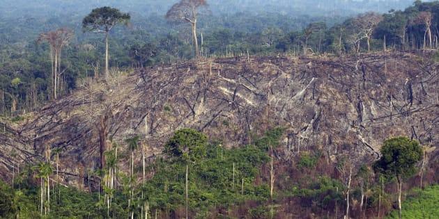 No sudoeste do Pará, a Floresta Nacional do Jamanxim é a unidade de conservação mais desmatada da região Amazônica.