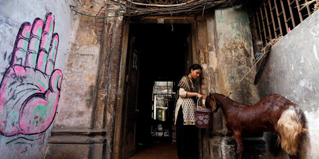 A woman gives water to a goat at her house after purchasing it at a livestock market on the eve of the Eid ul Azha festival in Kolkata, India September 12, 2016. REUTERS/Rupak De Chowdhuri