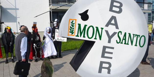 L'action de Bayer, propriétaire de Monsanto, a fait les frais de la condamnation américaine