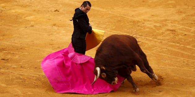 Les Baléares interdisent les corridas avec mise à mort.