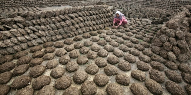 A woman makes cow dung cakes at Bahlolpur village in the northern Indian state of Punjab February 10, 2010. REUTERS/Ajay Verma (INDIA - Tags: SOCIETY)