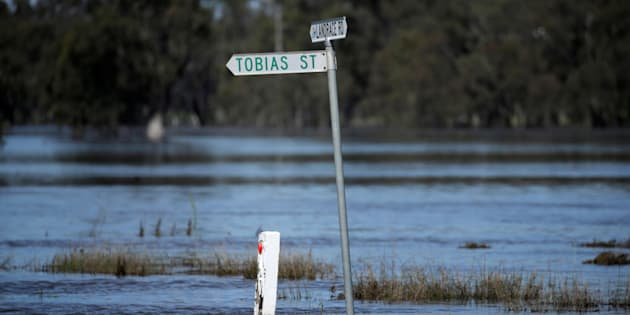 A leaking levee has prompted at evacuation order for part of Wangaratta in Victoria.
