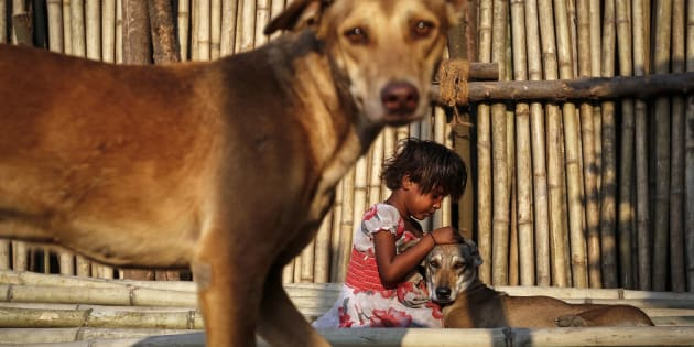 A six year-old-girl plays with street dogs on bamboo sticks at a timber market in Mumbai.