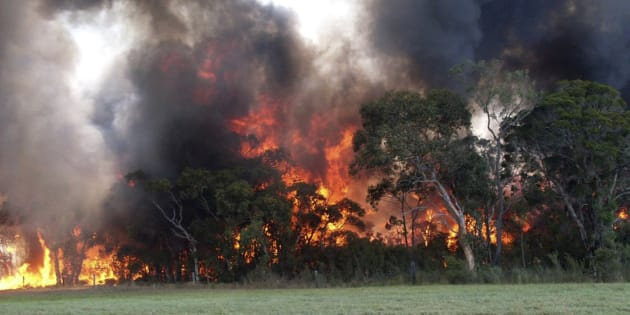 Fire authorities are in for another tough day on Monday with more than 50 bushfires burning around NSW.