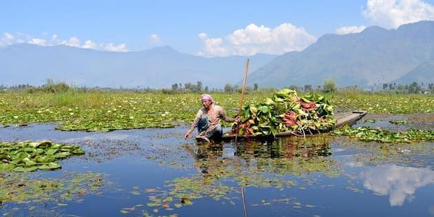 Fishing and other rural communities that have traditionally depended on Wular Lake are now struggling to earn a living from it, as shrinkage, siltation and ecological degradation take a toll on Kashmir's largest flood basin.