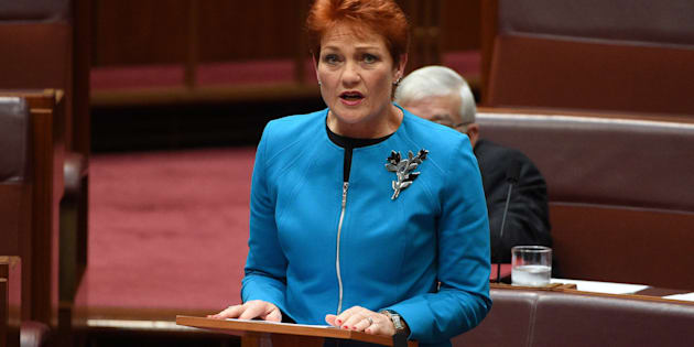 Support for Pauline Hanson's call for a ban on Muslim migration has softened.