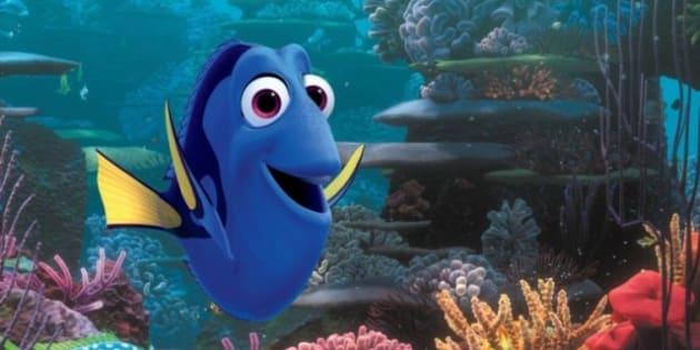Pixar pr voit une suite du monde de nemo avec dorie le - Doris et nemo ...