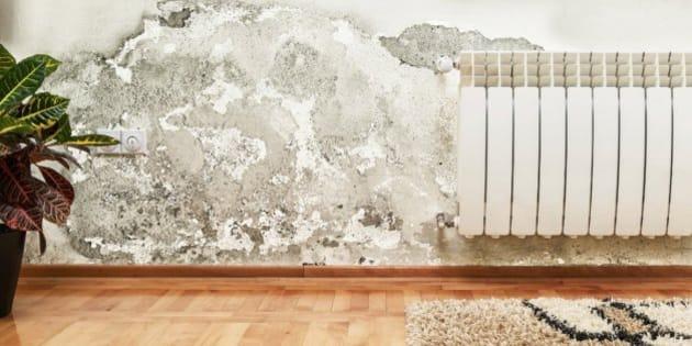 Ocho trucos infalibles para acabar con las humedades del - Como evitar humedades en las paredes ...