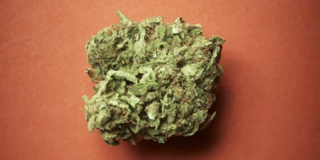 Che cosa successo oggi alla camera sulla cannabis l for Oggi alla camera