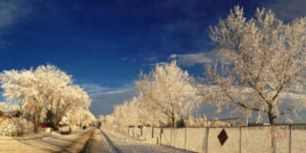 Snow Dusted Calgary Is The Most Beautiful Place In Canada Today Photos
