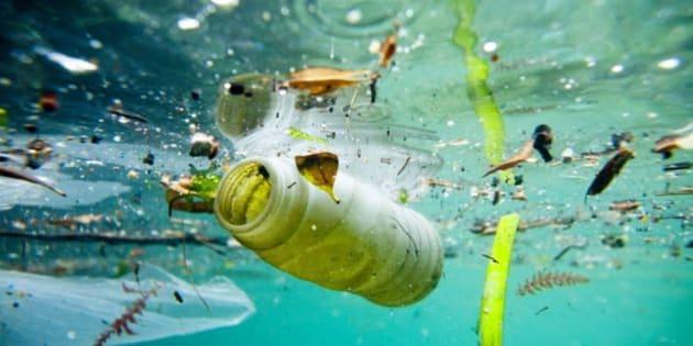 pollution des oceans