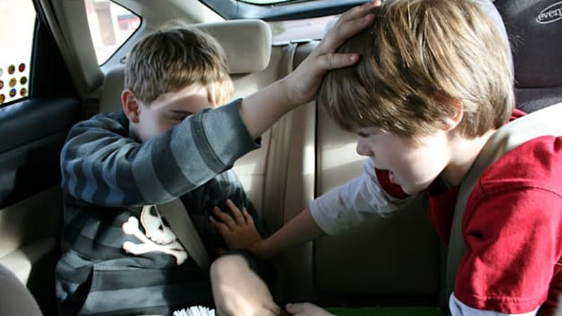 Kids more distracting than texting while driving