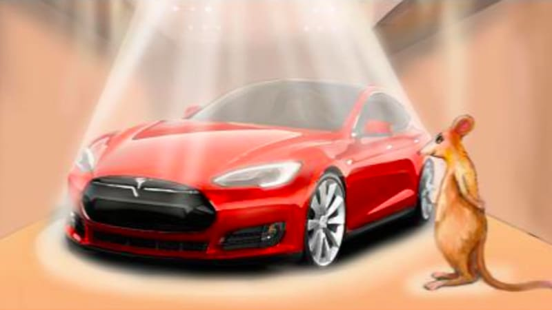 There S A Book Called My Tesla Love Story Of Mouse And Her Car About Who Loves An Electric The Page Notes That Its
