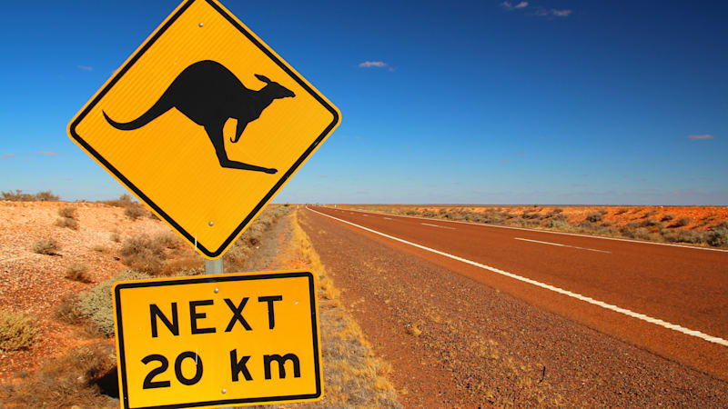 Volvo's self-driving cars are confused by kangaroos