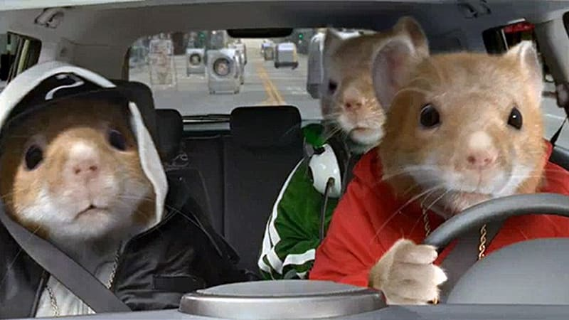 kia hamsters ready to return for new batch of soul ads autoblog. Black Bedroom Furniture Sets. Home Design Ideas