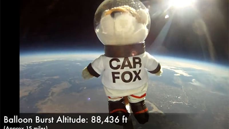 Carfax Sends Car Fox Into Orbit No Vehicle History Report Available