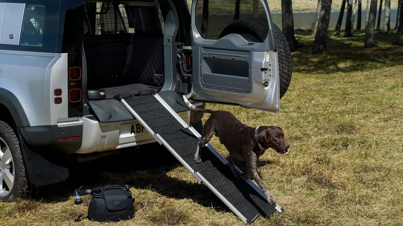2020 Land Rover Defender has accessories your dog will enjoy