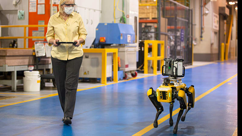 Watch robot dogs at work in Ford factory 1