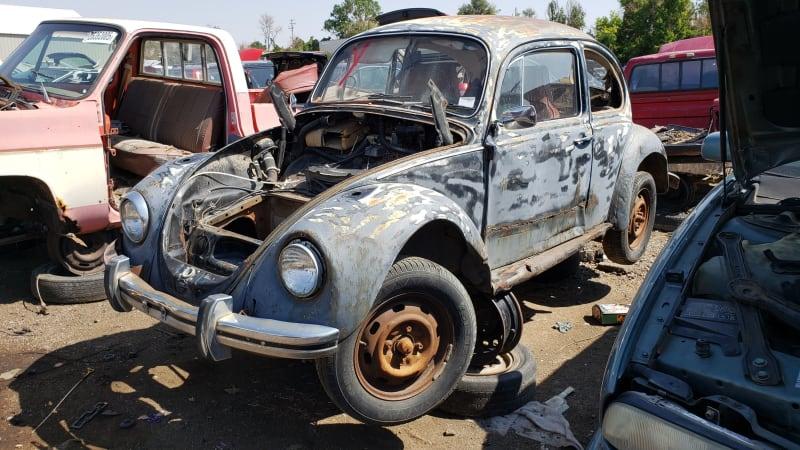 Junkyard Gem: 1969 Volkswagen Beetle Sedan