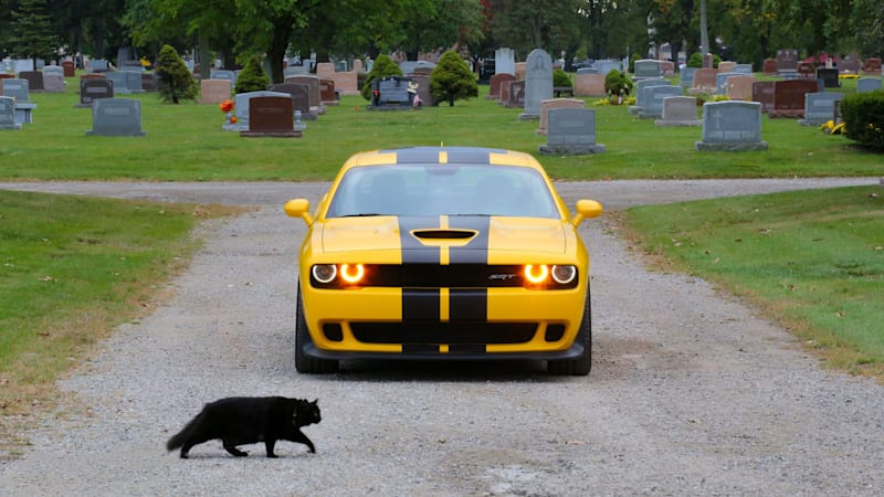 Happy Hellcat Halloween | Autoblog