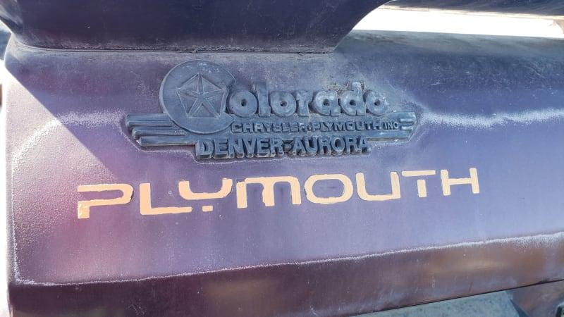 10 1993 Plymouth Sundance in Colorado junkyard photo by Murilee Martin