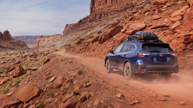 Feiern Sie den Internationalen Tag des Hundes und gewinnen Sie einen Subaru Outback voller Haustierzubehör€