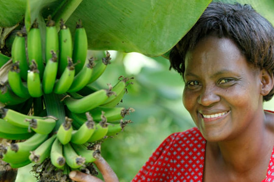 Janet Karimi, in her garden, has been a client of KWFT microfinance since 2007. She is currently servicing a loan of 100,000 KS, Kenya. (Photo by: Godong/Universal Images Group via Getty Images)