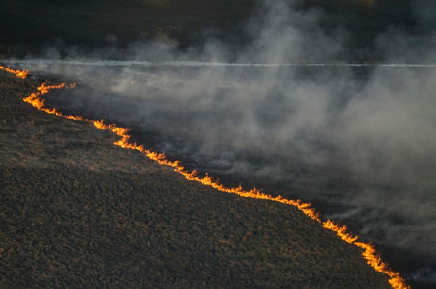 A fire strip crosses a forest floor in the Chernobyl area, Ukraine, Tuesday, April 28, 2015, as fire has engulfed a large sector of woods in the exclusion zone around the destroyed Chernobyl nuclear power plant. Ukrainian Prime Minister Arseniy Yatsenyuk says the fire is being brought under control. (AP Photo/Andrew Kravchenko, Pool)