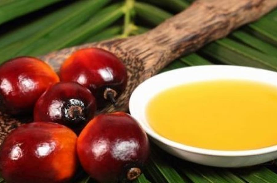 Tutta la verità sull'olio di palma