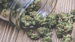 Des villes se questionnent sur l'impact du cannabis et sondent leurs