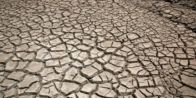 Un des effets du réchauffement climatique (illustration)