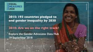 2015年に193カ国が2030年までにジェンダー平等の達成を約束 私たちは正しい道をすすんでいるのか?