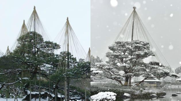 左:兼六園、右:昭和記念公園
