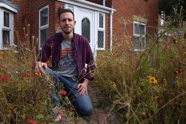 Man turns garden into wild meadow