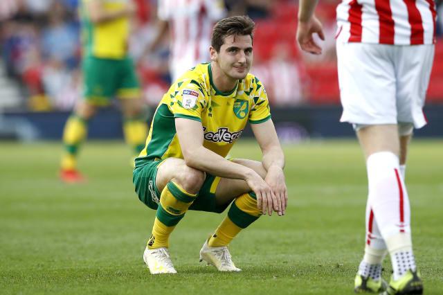 Norwich's Premier League promotion party put on hold