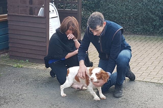 Moment two delighted dog owners were reunited with their pet pooch Bonnie -- who was stolen six years ago