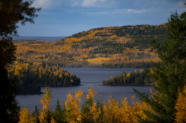 Fall foliage colors in northern Minnesota