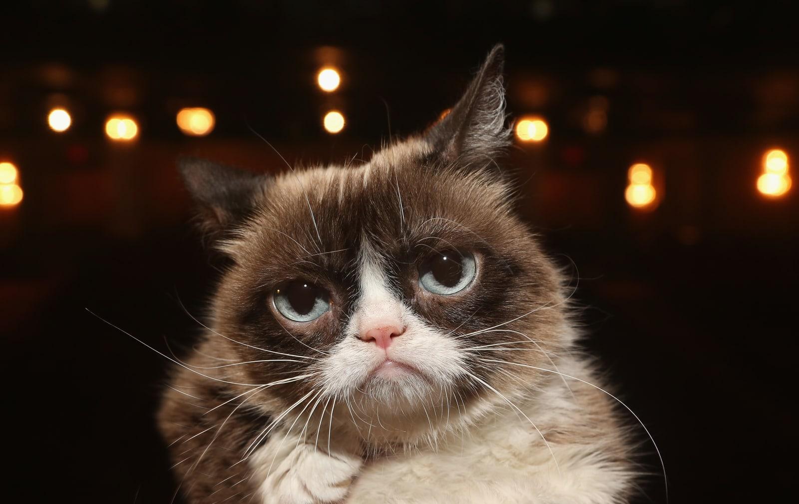 Grumpy Cat Visits The Broadway Cast of 'Cats'