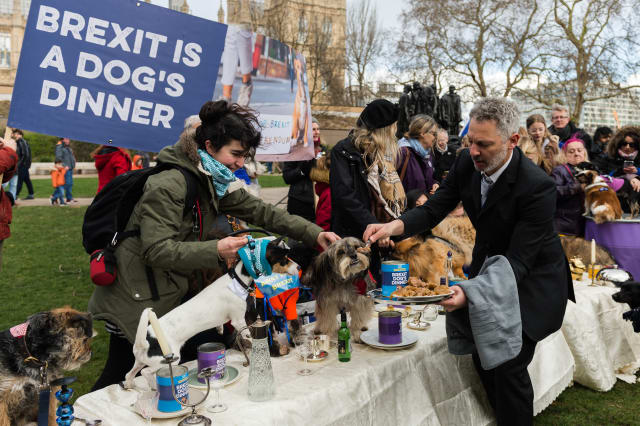 'Brexit Is A Dog's Dinner' Protest In London