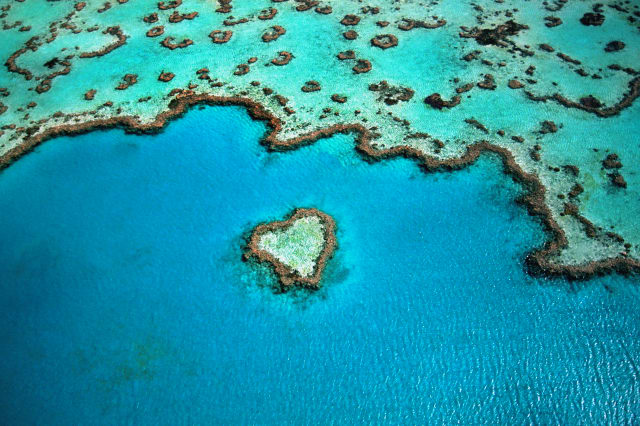 Australia, Great Barrier Reef, heart shaped reef, aerial view