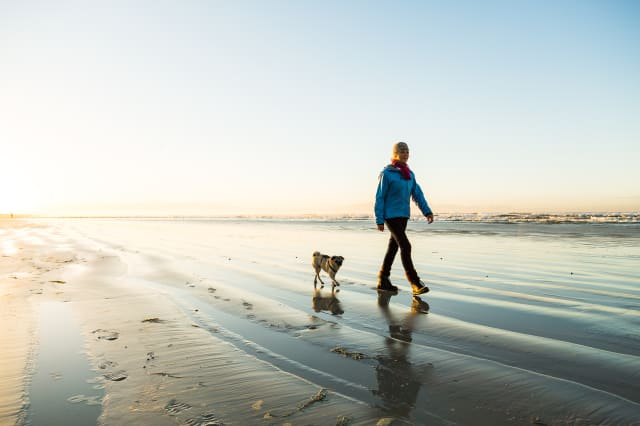 Senior woman walking her dog on the beach at dawn