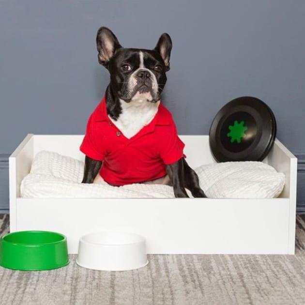 Ikea lancia una linea di mobili dedicata a cani e gatti ed for Tiragraffi ikea