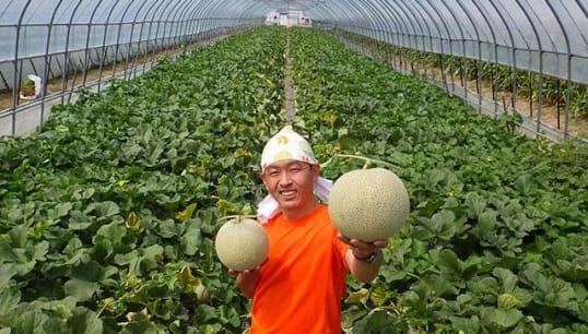 寺坂農園の代表、寺坂祐一さん