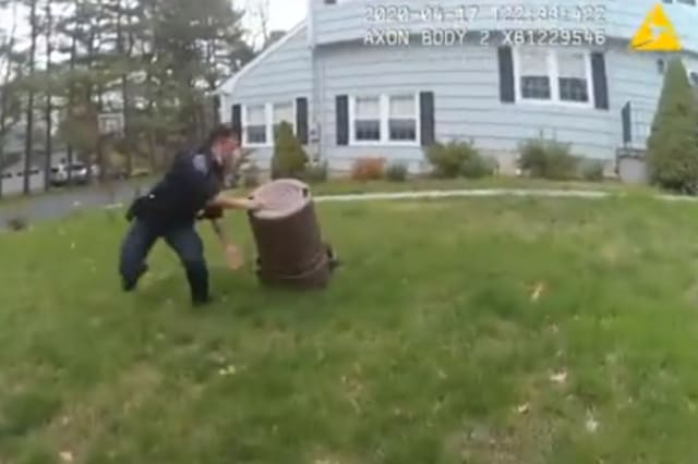 Police officers go on wild 45-minute chase after little pig